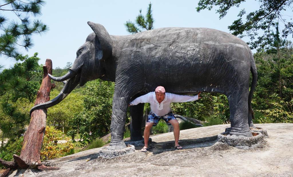 поднять слона